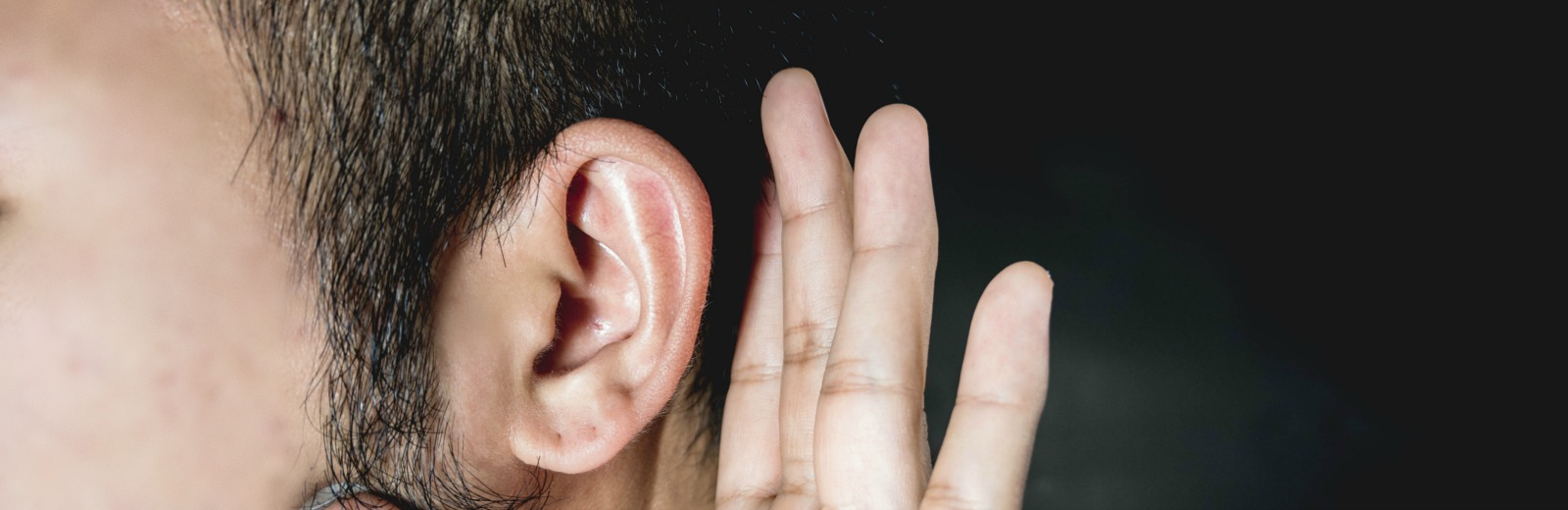 Guide to Hearing Loss